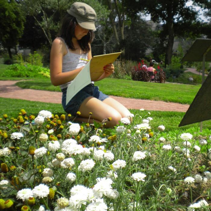 cueillette Jardin Camifolia