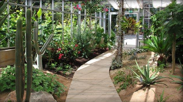 espace serre Jardin Camifolia