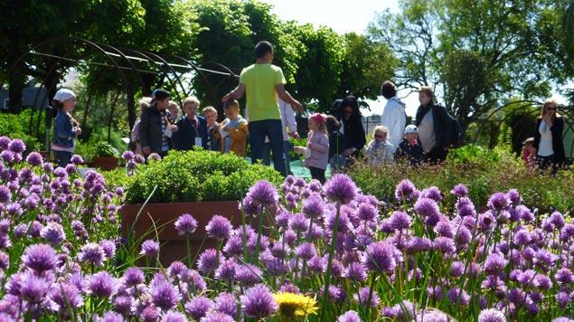 groupe enfants découvertes Jardin Camifolia