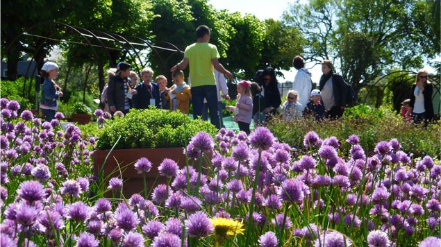 Jardin camifolia les jardins for Jardin 1001 saveurs