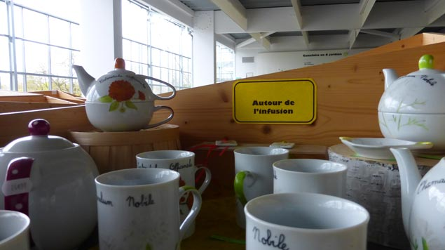 boutique Jardin Camifolia