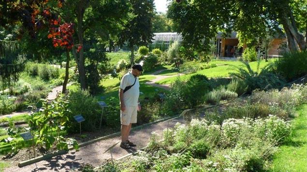 jardin botanique Jardin Camifolia